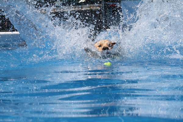 Huge Splash - Photo by Jim Zelasko of Precise Video Pro