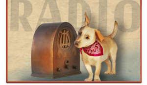 Brasil_Radio_dog