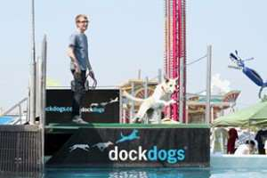 Brian J. King - DockDogs Worldwide