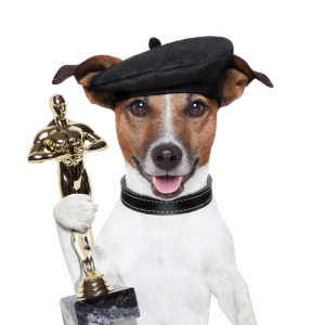 DockDogs Year End Awards