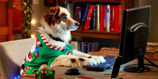 Christmas Dog Sweater Computer