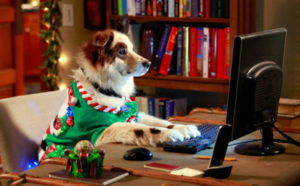 Dog Christmas Credits Computer