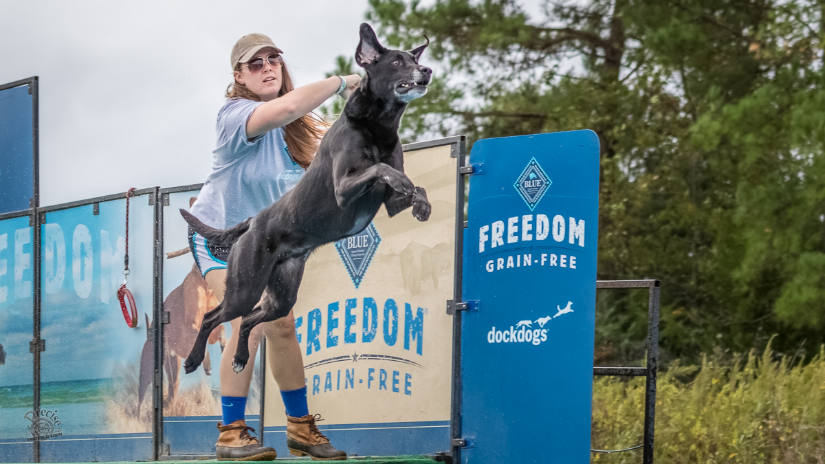 Carolina DockDogs Blue Buffalo Dirty Dogs