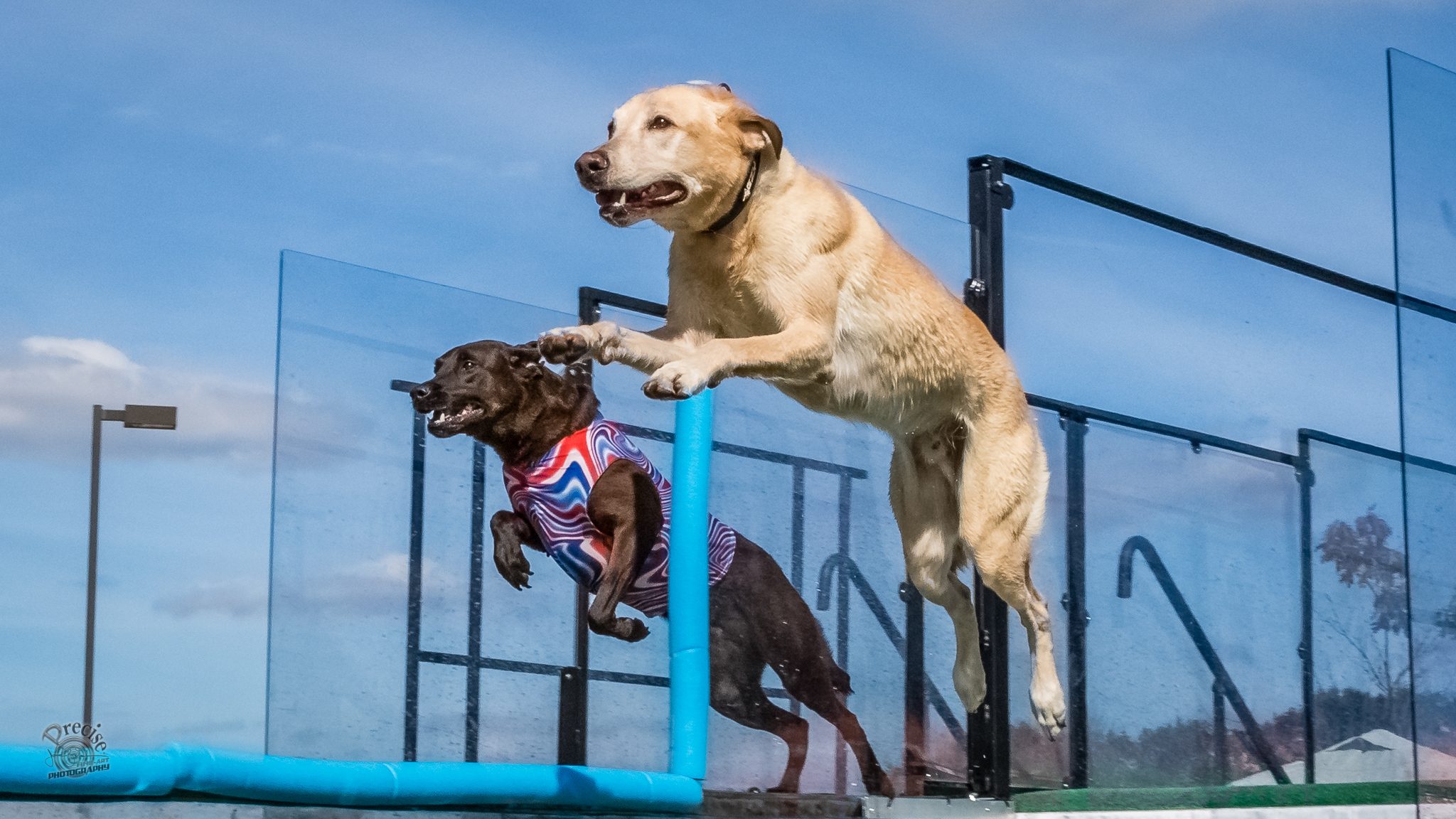 Radio DockDogs® Episode 167