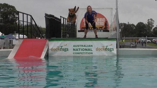 DockDogs Australia