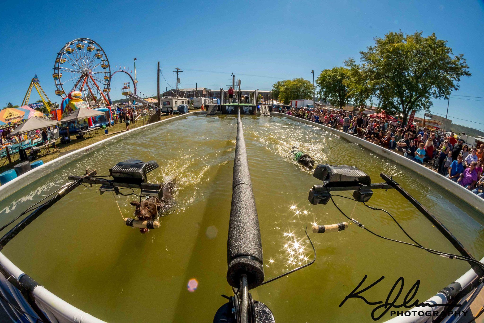 Radio DockDogs Episode 152 – Dueling Dogs in Canada & DockDogs in Ohio